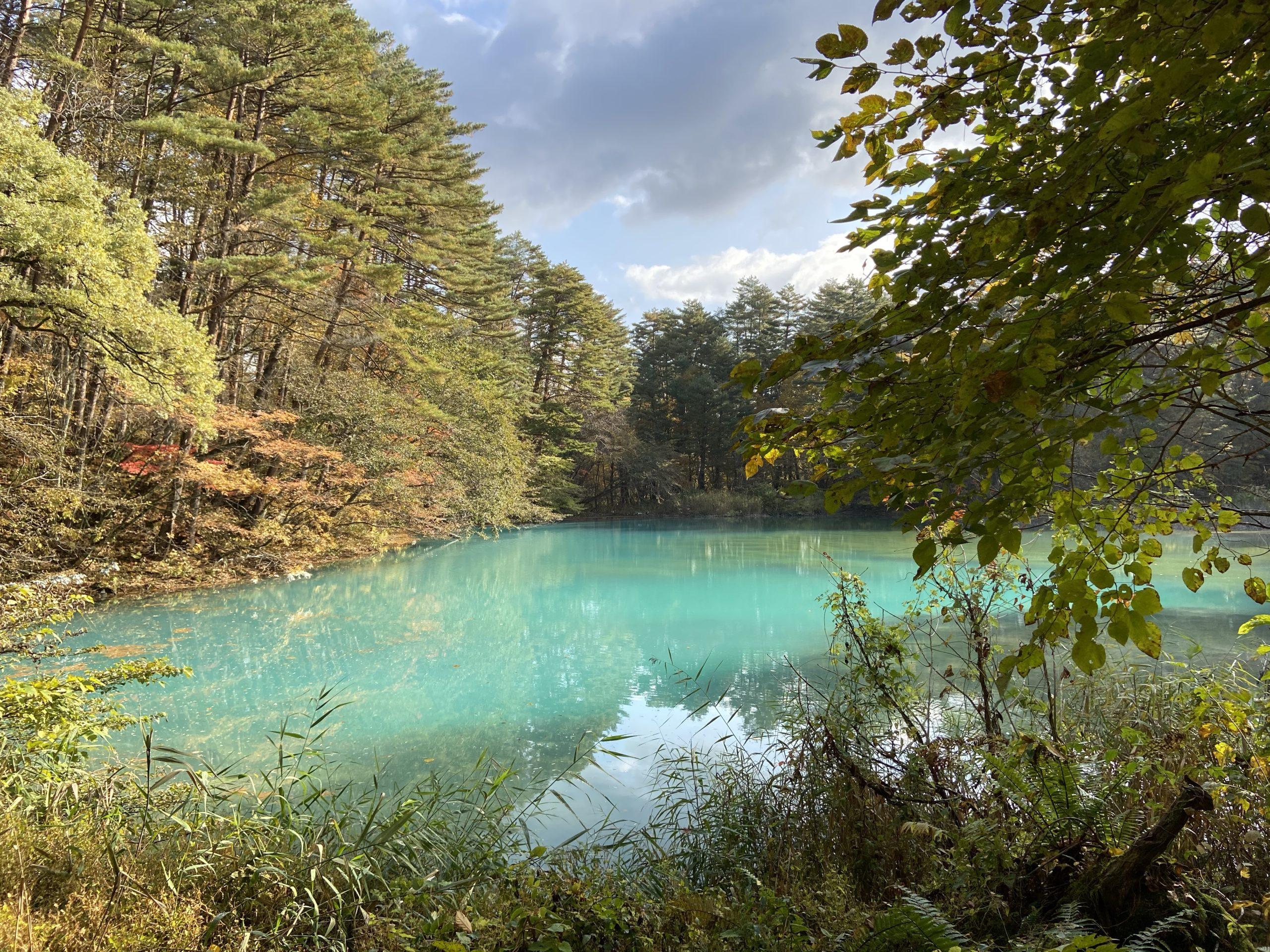 エメラルドグリーンの沼の画像